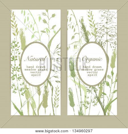 Vector flyer design template. Meadow grass silhouettes in natural green colors with oval label. Organic product bio cosmeticks and eco nature background.