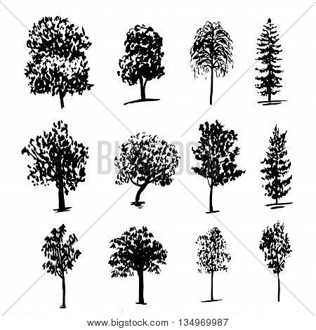 drawing collection of 12 elements of different types of trees graphic ink sketch hand drawn vector illustration