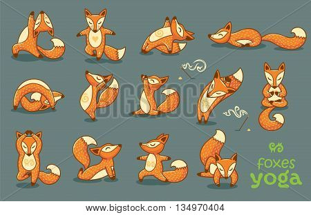 Hand drawn cartoon red foxes doing yoga poses on a gray background. Vector illustration of a cute foxes practicing Yoga. Character design. Template for design cards, notebook, yoga studio, poster