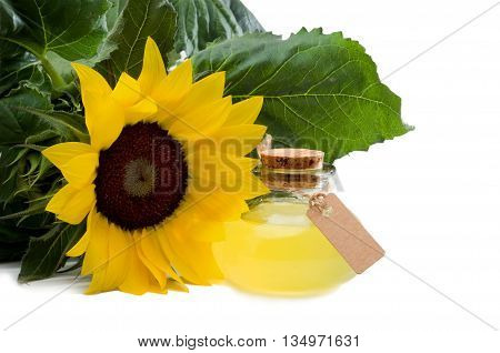 Sunflower oil with cardboard and copy space isolated