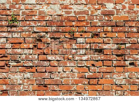 Background of old red brick wall surface