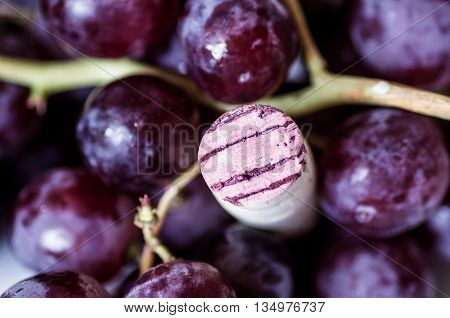 Cork wine red grape berries among closeup