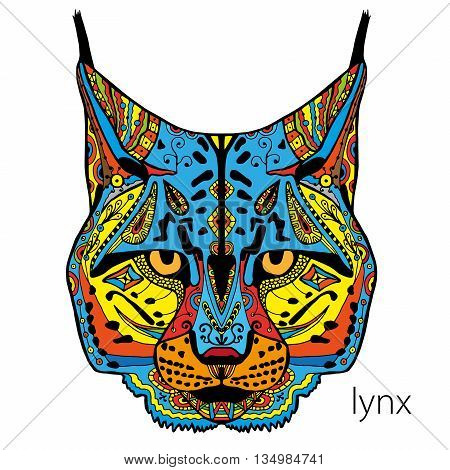 beautiful painted images of lynx coloring page for adults coloring book vector arth therapy
