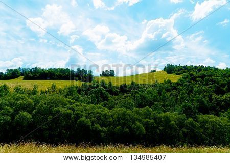 Beautiful landscape, green meadow and trees with beautiful sky
