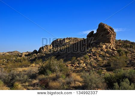 A rock formation surrounded by bush under a blue sky in Yoshua tree Park, USA.