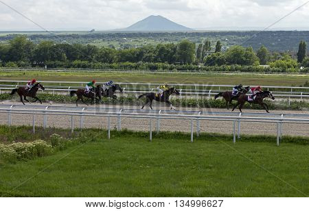 Pyatigorsk, Russia - June 19,2016:The race for the prize of the Pyatigorsk, Russia's largest hippodrome in Pyatigorsk,Caucasus,Russia on June 19,2016.