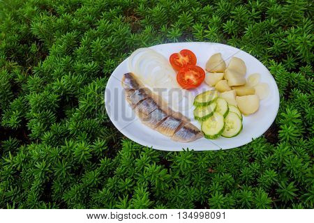 Herring Salad With Vegetables On White Plate Top View