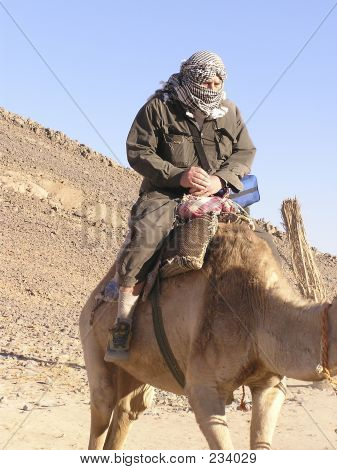 Baby boomer Tourist On Camel