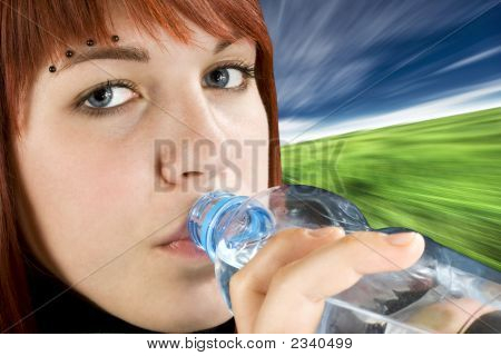 Redhead Drinking Water