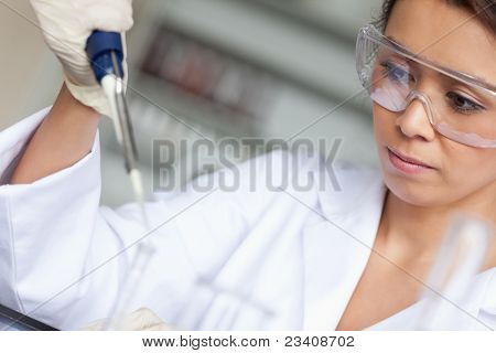Good looking woman pouring liquid in a tube in a laboratory