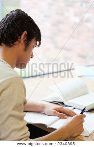 Portrait of a young student writing an essay in the library