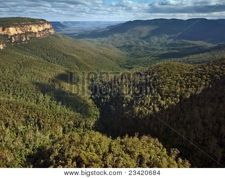 Blue Mountains Near Wentworth Falls New South Wales Australia