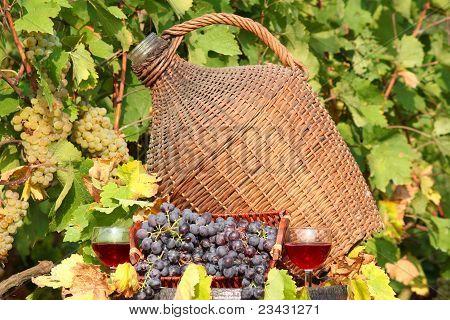 red wine autumn scene