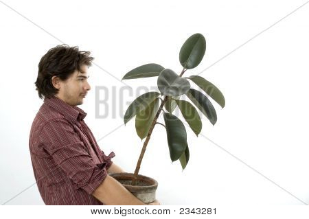 Man Carrying A Plant