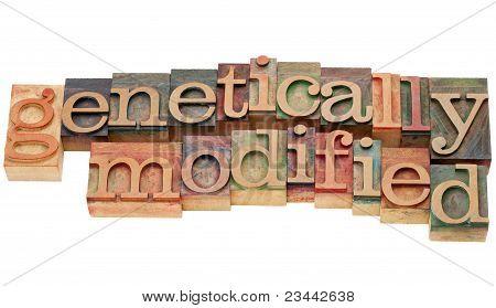 Genetically Modified In Letterpress Type