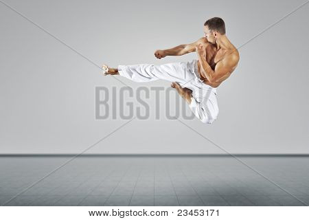 An image of a martial arts master