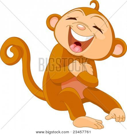 Funny Cute little  monkey Laughing