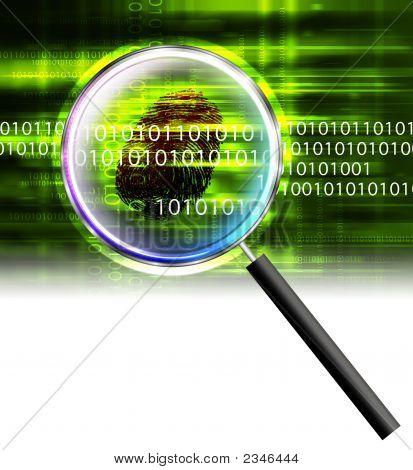 Crimen de datos