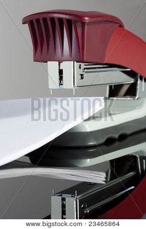Stapler With Documents