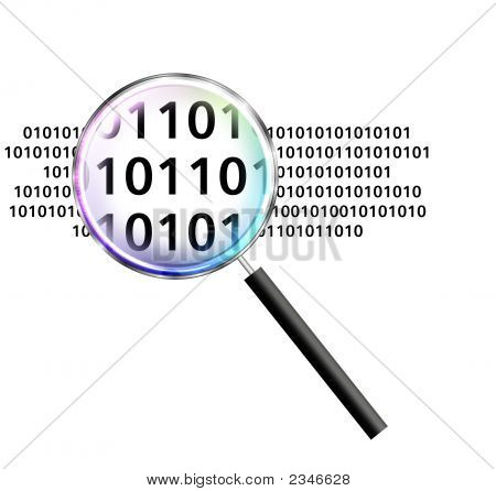 Magnify Data