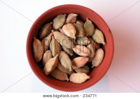 Seeds Terracotta Bowl