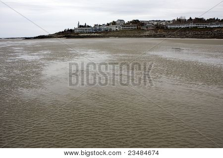 A Beach In Winter