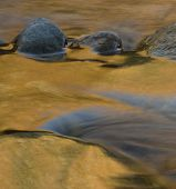 image of engadine  - Stones in golden flowing water - JPG