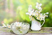 Jasmine Flowers Aromatherapy, Jasmine Petals In Glass Bowl Decoration poster