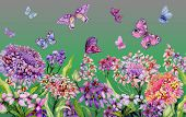 Summer Wide Banner. Beautiful Vivid Iberis Flowers And Colorful Butterflies On Green Background. Hor poster