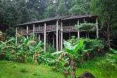 picture of longhouse  - longhouse in borneo - JPG