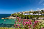 picture of verbs  - Cove and harbour of Port Isaac - JPG