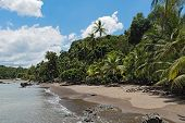 Beautiful Beach At Drake Bay On The Pacific Ocean In Costa Rica poster
