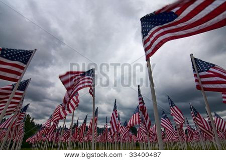Arrangement Of American Flags Commemorating Us National Holidays