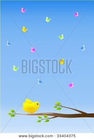 Bird and butterflies