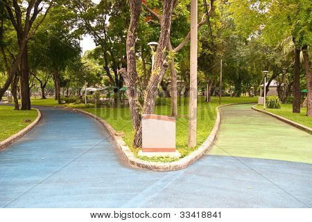 Footpaths in the lumpini park