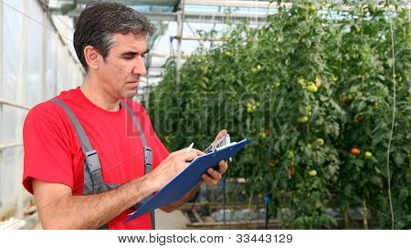 Worker Writing On Clipboard In Greenhouse