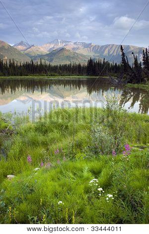 Alaska Wilderness