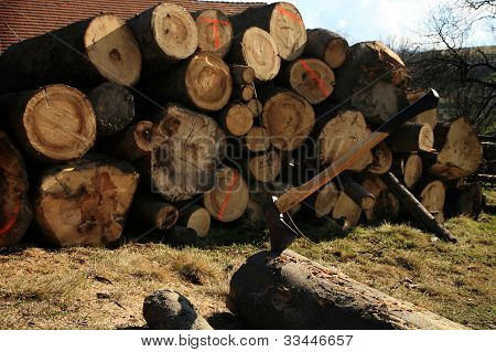 Lumberjack Equipment - ax