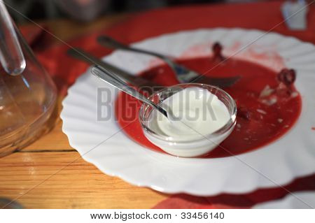 Sauce Boat With Sour Cream