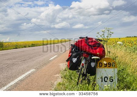 Bicycle And Sunflowers In Burgundy
