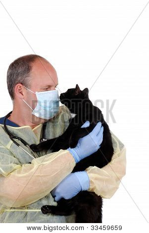 veterinarian with black cat
