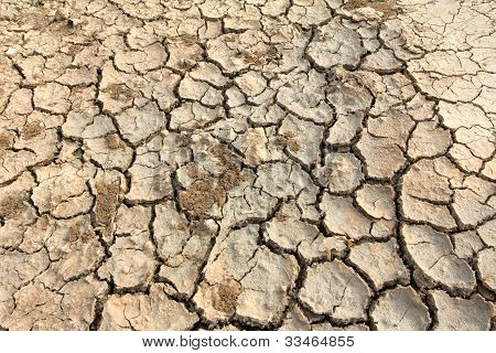 Drought Land Soil
