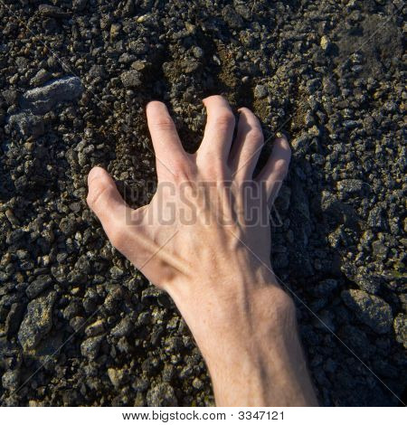 Hand Clinging Stony Ground