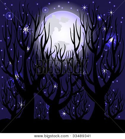 Vector Illustration Of A Night Scene.