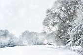 Winter Snow Landscape In English Countryside In Heavy Snow Storm poster