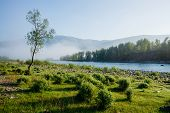 Wonderful Calm Morning Landscape With Alone Tree Near Mountain River In Fog. Beautiful Green Meadow  poster