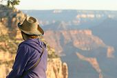 pic of glorious  - A young tourist wearing a straw hat takes in the glorious Grand Canyon view in Arizona - JPG