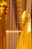 Beautiful Golden Harp Strings Close Up. Musical Instruments Of The Orchestra In Philharmonia. poster