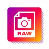 White Raw File Document. Download Raw Button Icon Isolated On White Background. Raw File Symbol. Squ poster