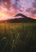Arenal Volcano, Volcán Arenal Is An Active Andesitic Stratovolcano In North-western Costa Rica Aroun poster